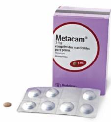 METACAM antiinflamatorio no esteroide analgésico antipirético en comprimido masticable