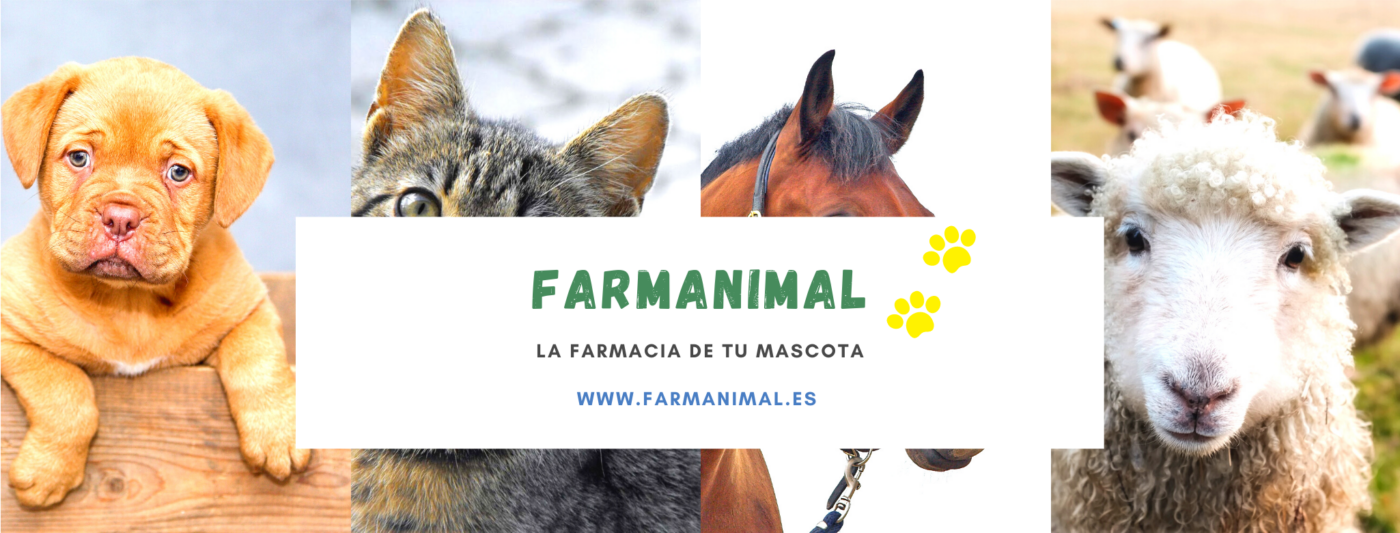 Farmanimal Facebook cover